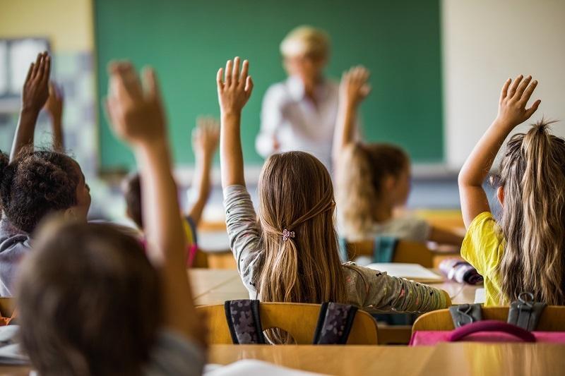Jaką przewagę ma prywatna szkoła podstawowa nad publiczną?